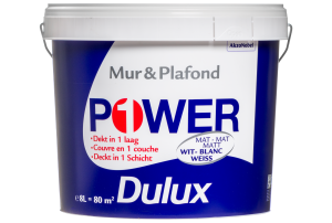 Dulux Power 1